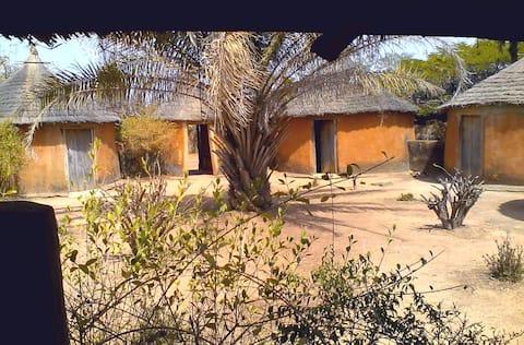 Baobab camp