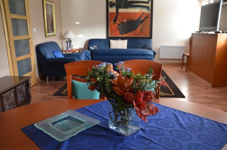 Apartment Vila - Cetinje