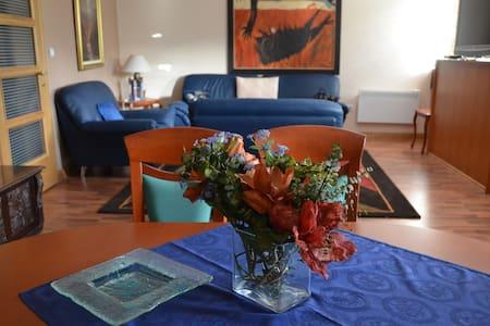 Apartment Vila - Cetinje - อพาร์ทเมนท์