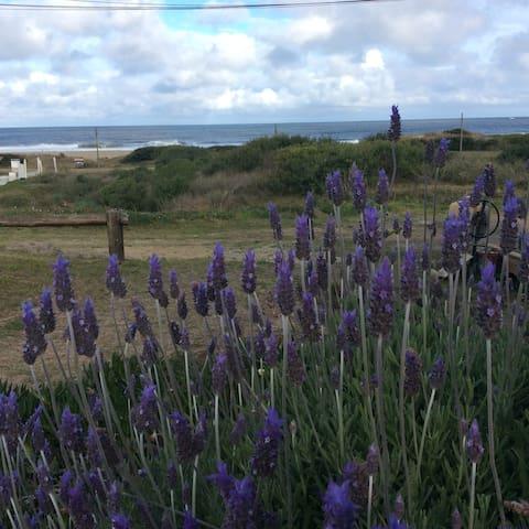 Romántico monoambiente vista al mar