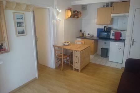 Chamonix Grands Montets based apartment