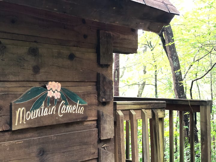 Glamping. Smoky mtns-hot tub-grill