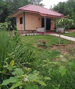 Ein bungalow inmitten vom grünen.