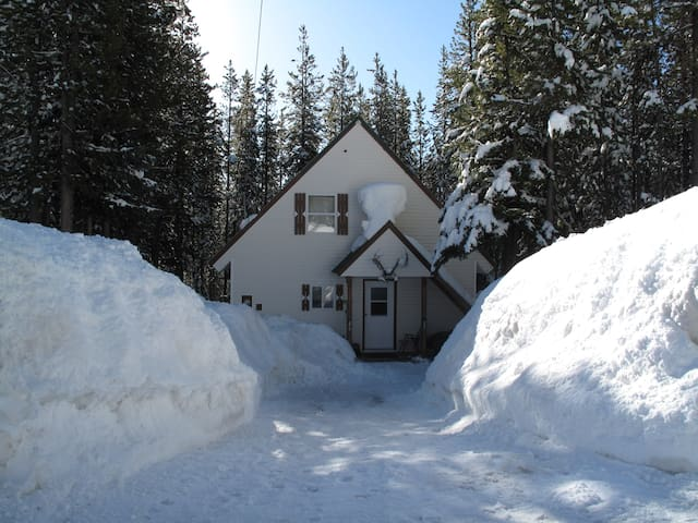 The Baldy Cottage