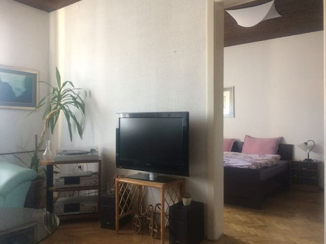 MEDVED place  (42m2,market, bus stop,own entrance) - Ljubljana - Apartment