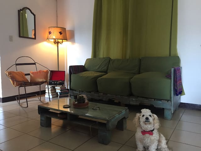 This is the room you can afford - Managua - Apartment