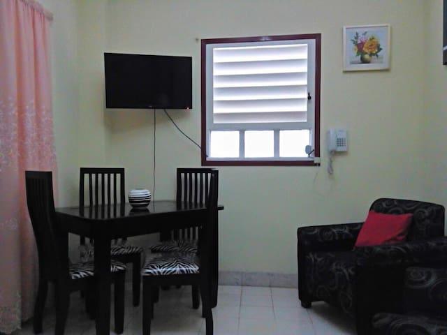 CasaDomenech Private apartment in Old Havana +WiFi