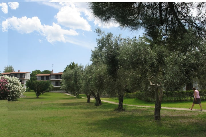 Haniotis' flat with sea view in a green oasis