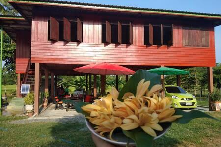 สวนลุงหน่องโฮมสเตย์/Lung Hnong Garden&Homestay