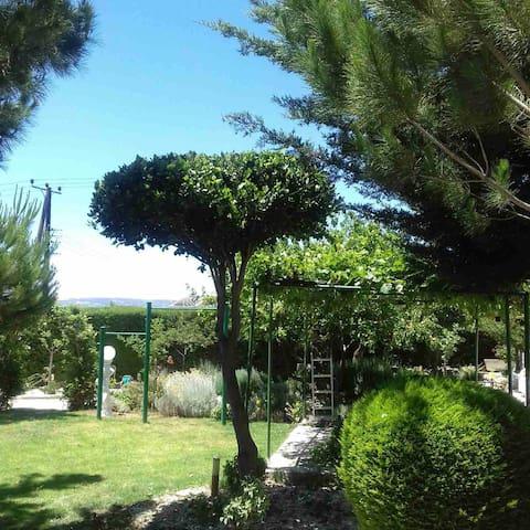 Насладитесь спокойной атмосферо  Кипра
