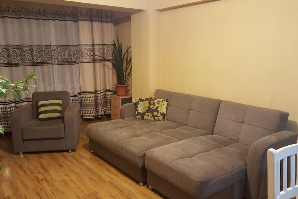 Living room has a sofa bed