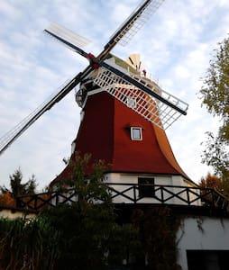 Windmühle nahe Rostock - Thulendorf - Andere