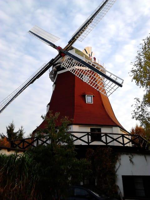 Windmühle nahe Rostock