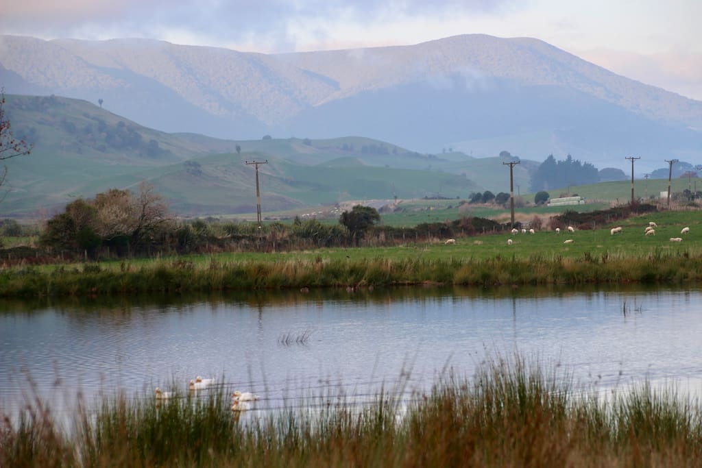 View of Redan Valley from our pond