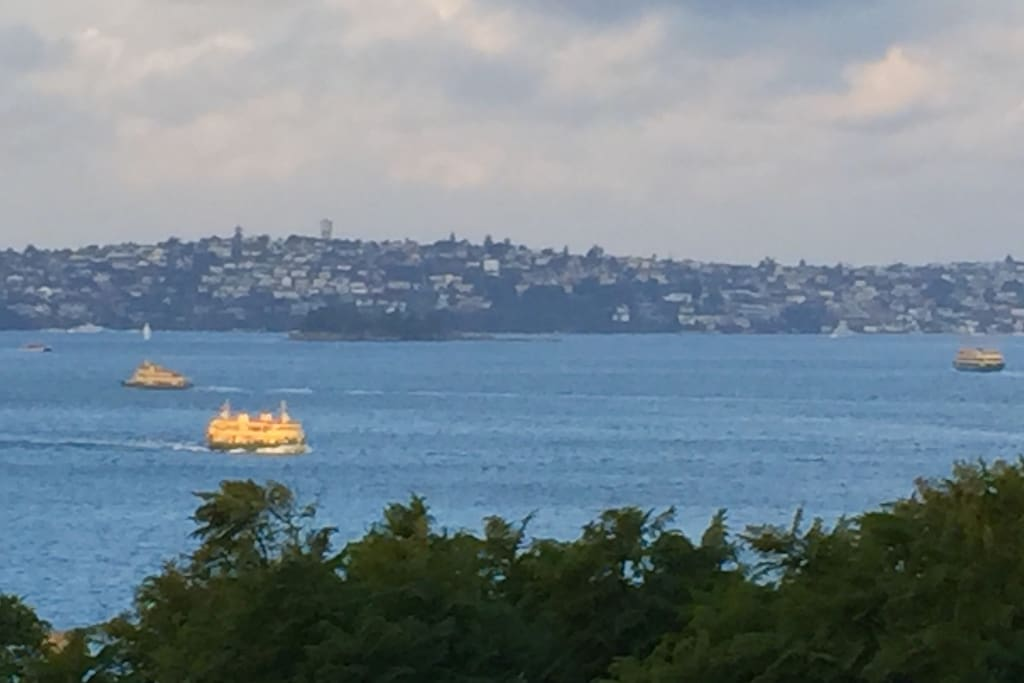 Sydney ferries from the balcony