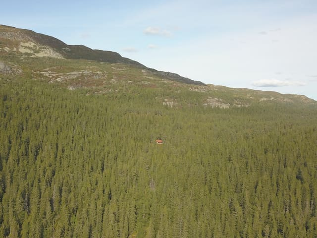 Nystaul at Brekketo - A charming mountain cabin