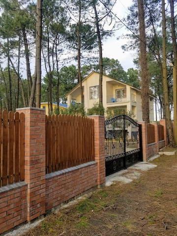 Villa Sunny Grigoleti _Seaside