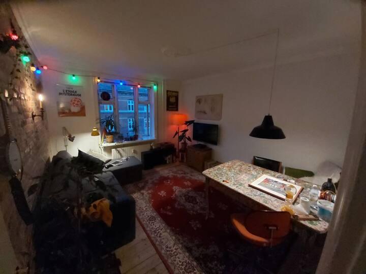 Apartment near airport, Christiania, beach
