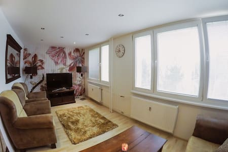 FLAT NEAR BY CITY CENTER AND STEEL ARENA