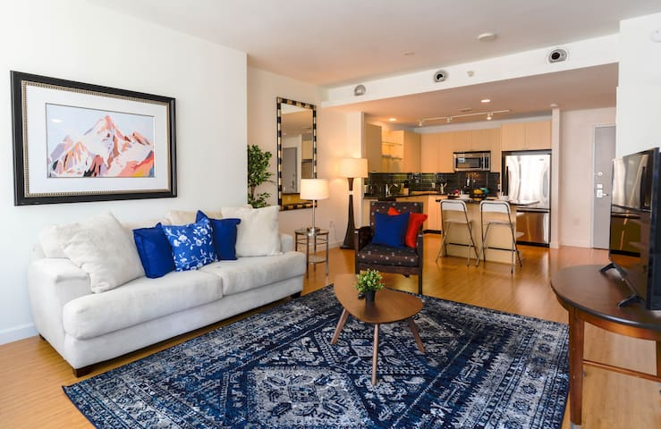 Great Value 1 BR Apartment – Downtown Location