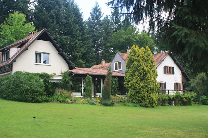 Luxury charming mansion in the middle of forest - Dambach - Villa