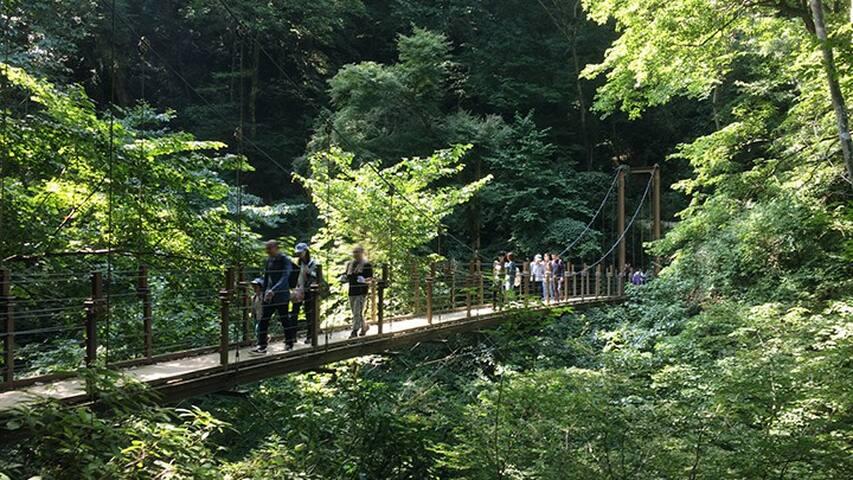 Gateway to Sacred Mt. Takao