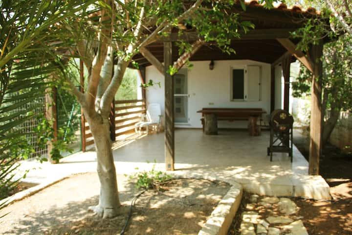 House with garden ON beach