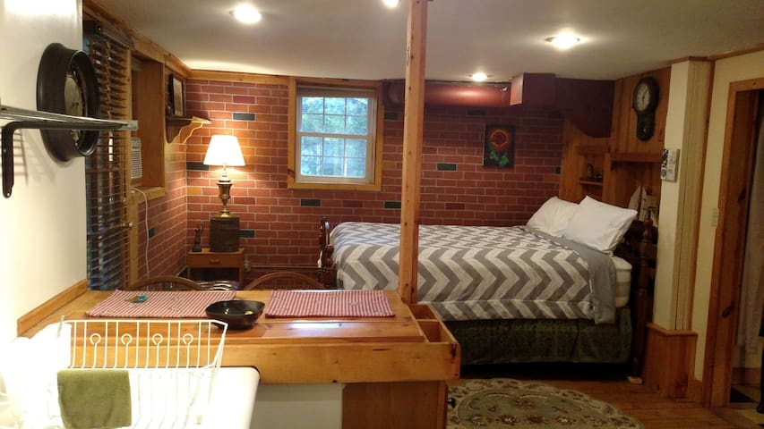 1 BdRm Retro Apartment; walk to downtown Asheville - Asheville - Departamento