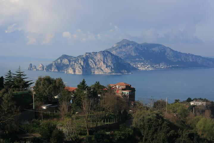 Villa Starace Appartamentino - Termini - Apartment