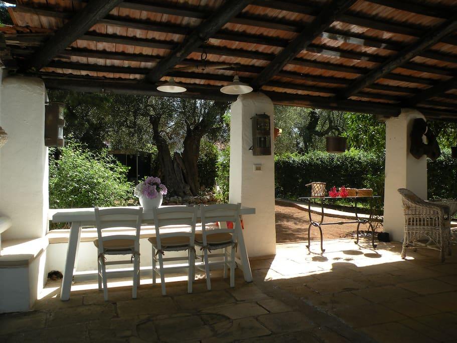 zona colazione/pranzo/cena (adiacente al tavolo piccola cucina)