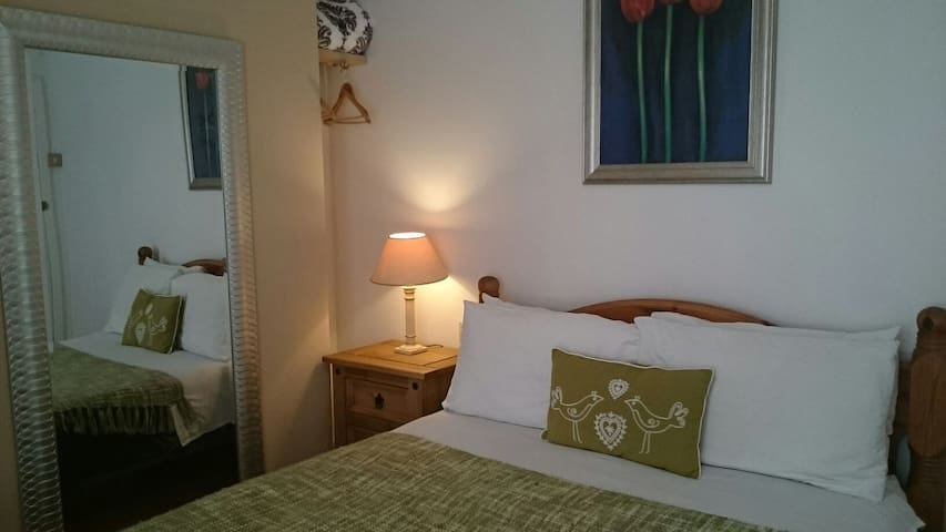 Double room with shared shower - Taunton  - Bed & Breakfast