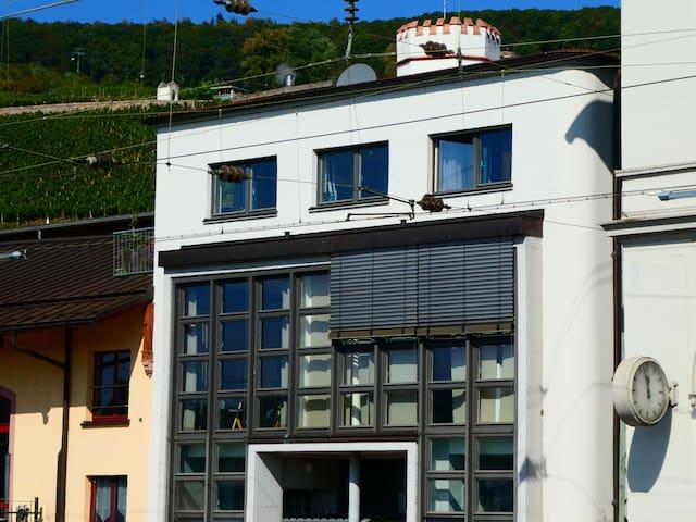 Flussbett im Bauhaus App 17