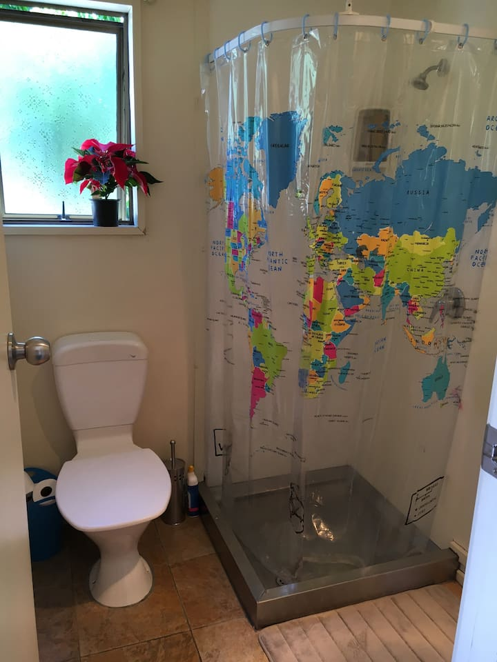 Bathroom with shower, toilet and hand basin.