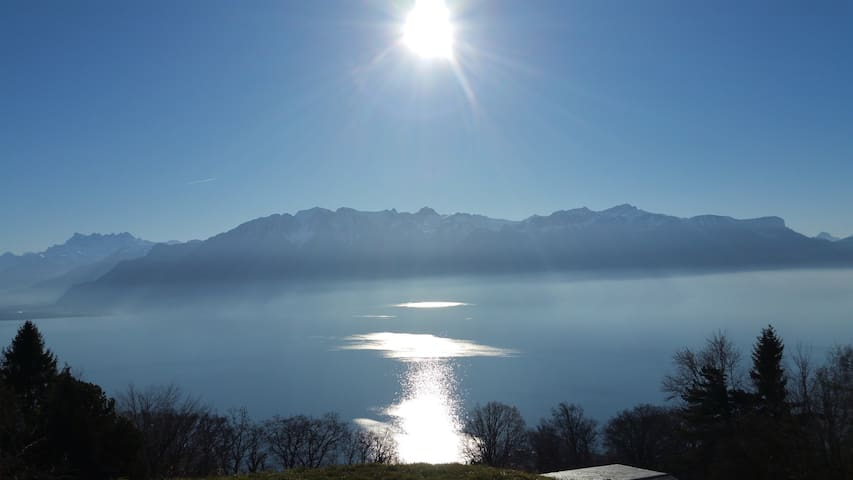 Breath taking views in authentic Swiss setting - Chardonne
