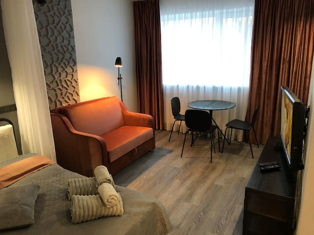 Vilnius Cozy Studio Apartment