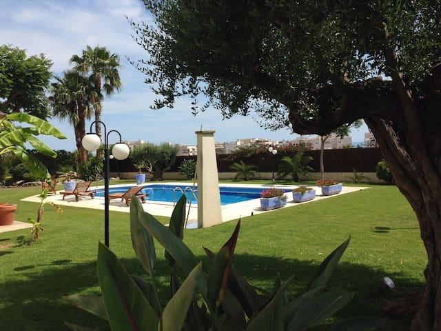 Mediterranean villa with tropical garden. Paradise