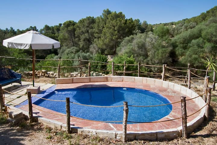 Apartment with one bedroom in Petra, with shared pool, enclosed garden and WiFi - 20 km from the beach