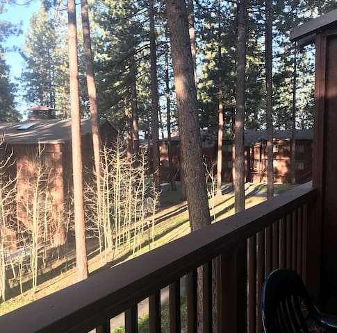 Tahoe condo in the woods, steps from the beach #73