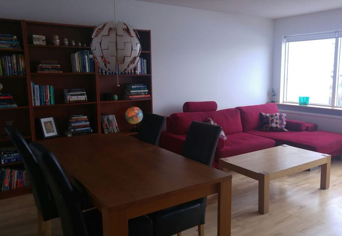 Nice apartment in a great location - Reikiavik - Apartamento