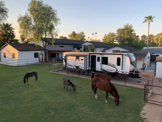 Perfectly Located Scottsdale Horse Property