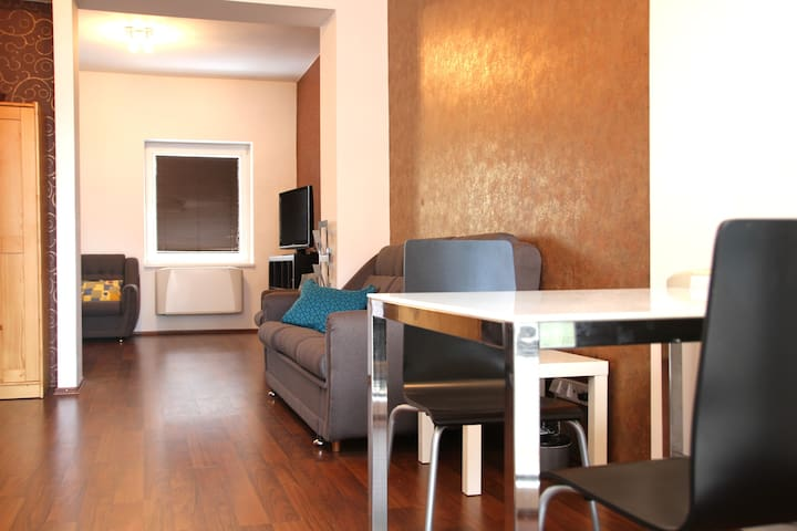 In central part with parking right in front - Bratislava - Apartment
