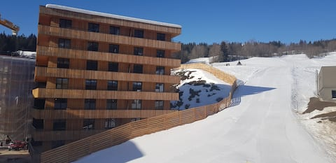 2.5 Room Apartment in Center of Flims. Ski in/out
