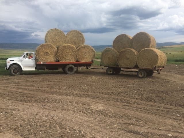 It's all about hay and water in this business!