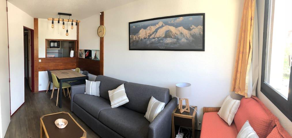 Coeur de Chamonix, plein sud vue Mt Blanc