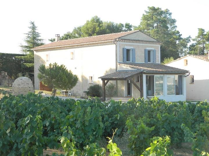 En Provence, au milieu des vignes, face au Ventoux