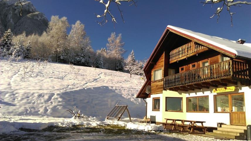 Craiu's Dawn House (Casa Zorii Craiului)
