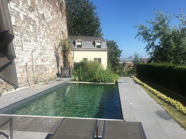 Maison de la piscine, centre Liege