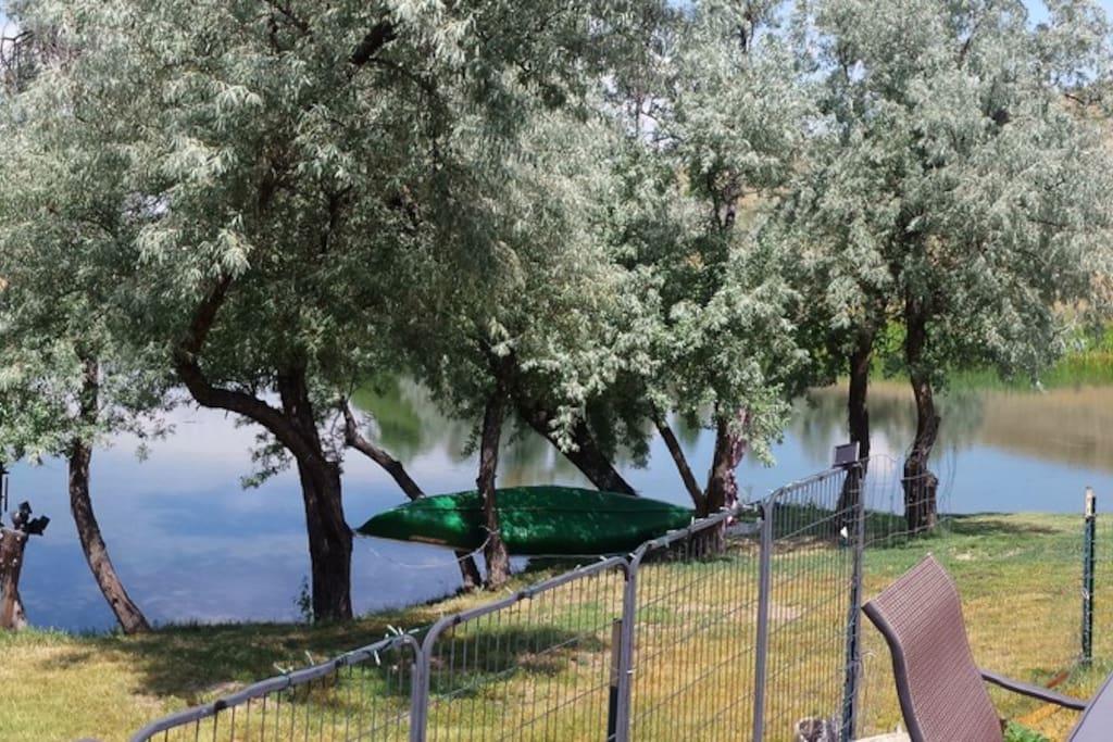Canoe, paddle boards, kayak, paddle boats