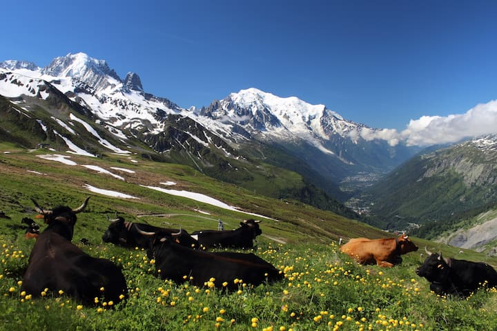 You will love to spend time in the mountains around Saint-Gervais-Les-Bains.