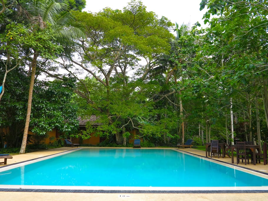 The gorgeous pool shared by just 7 privately owned bungalows in a two acre gated community just yards from the beach!